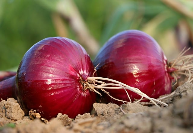 3 Red Onions