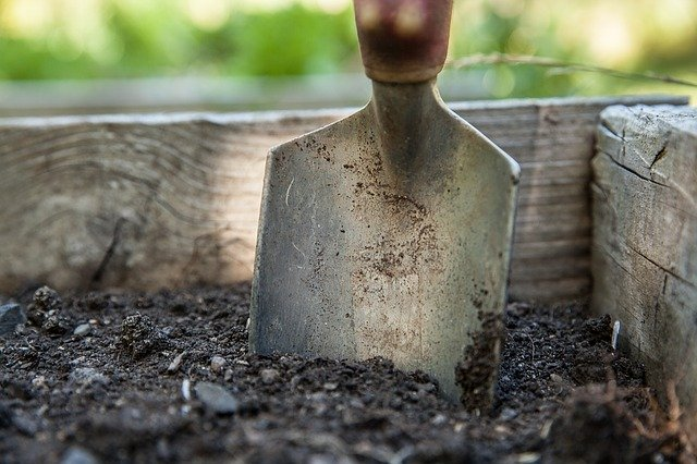 4 Work the soil over breaking up clumps of earth and removing stones before planting