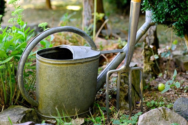 5 Watering Can