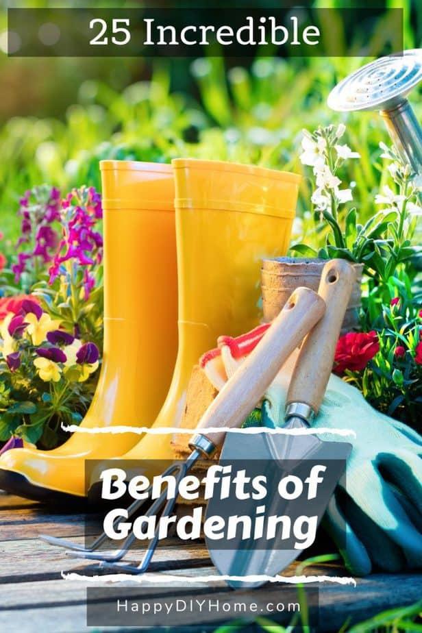 Benefits of Gardening 1