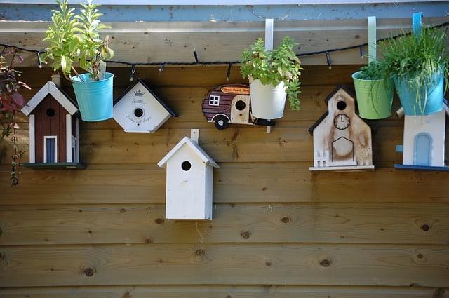 Different Birdhouse Ideas Start