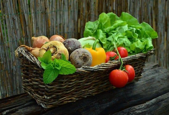 Gardening Benefit 7 Save Money