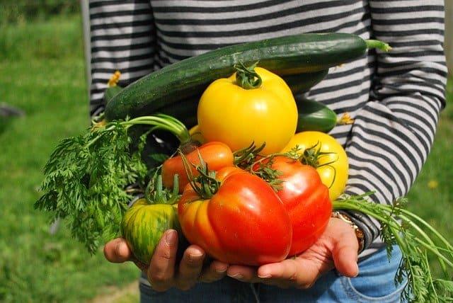 Gardening Benefit 9 End