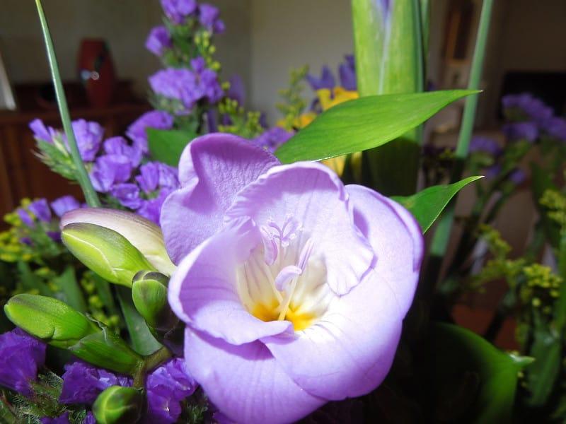 1 Purple Flower Arrangement