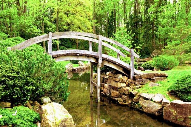 10 Small Bridge Over a Pond