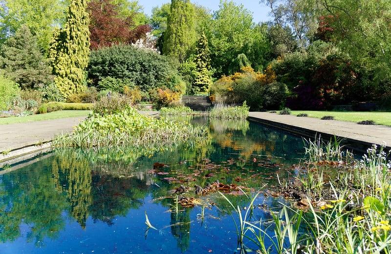 20 Grassy Pond