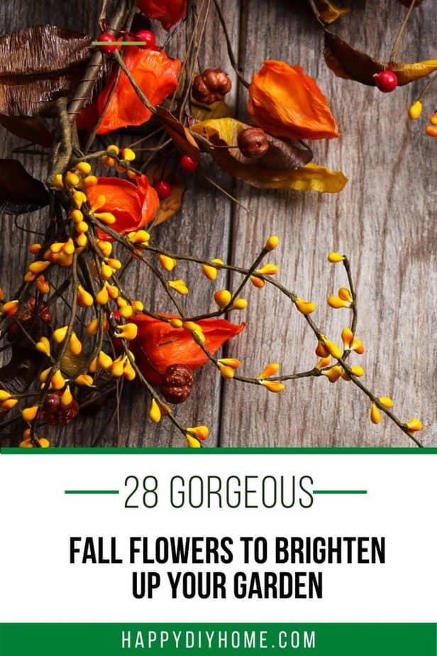 28 Fall Flowers 1