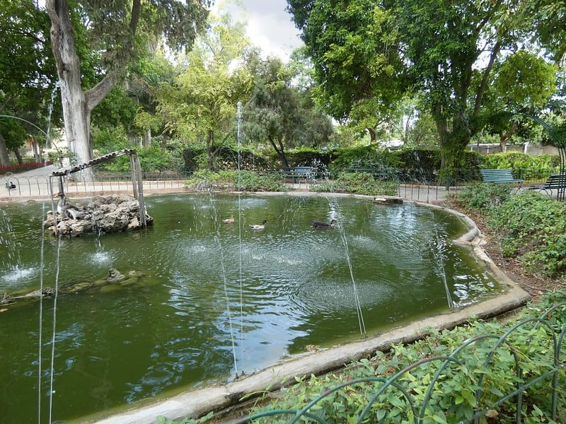 30 Pond with Spray
