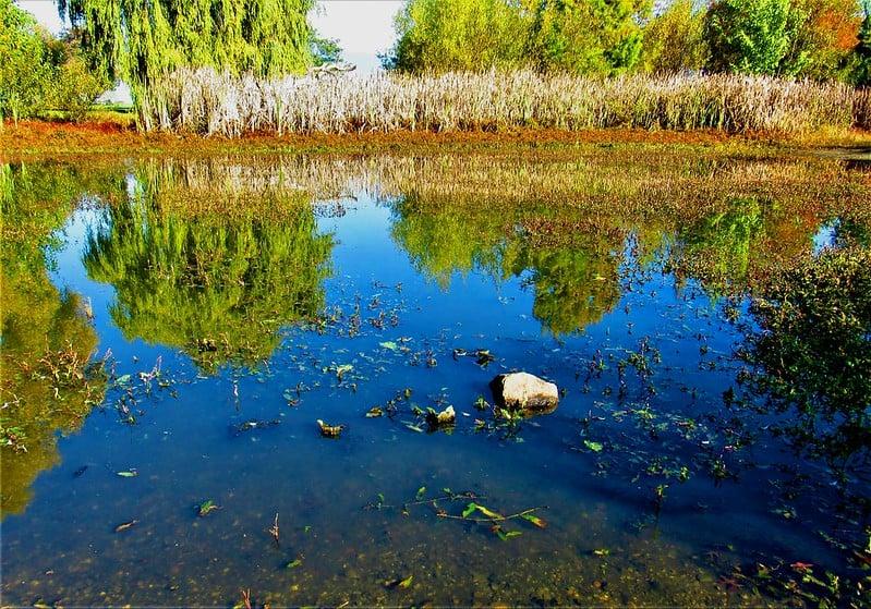 32 Reflection Pond Mirage