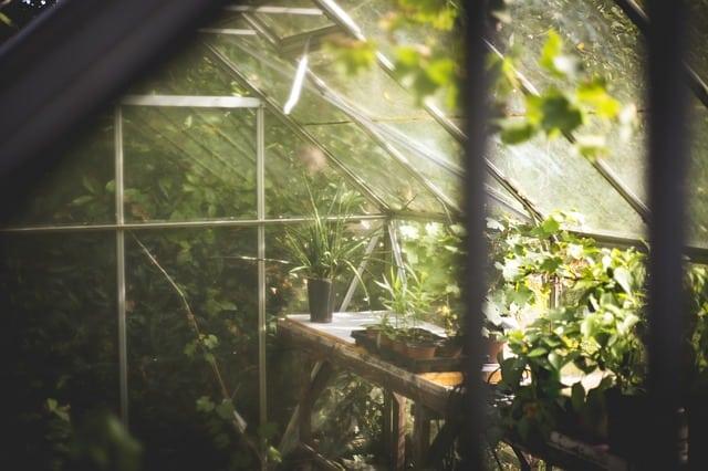 5 Greenhouse