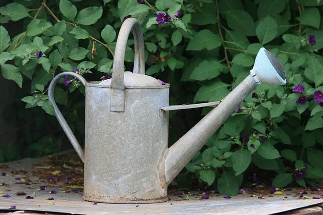 6 Watering Can 1
