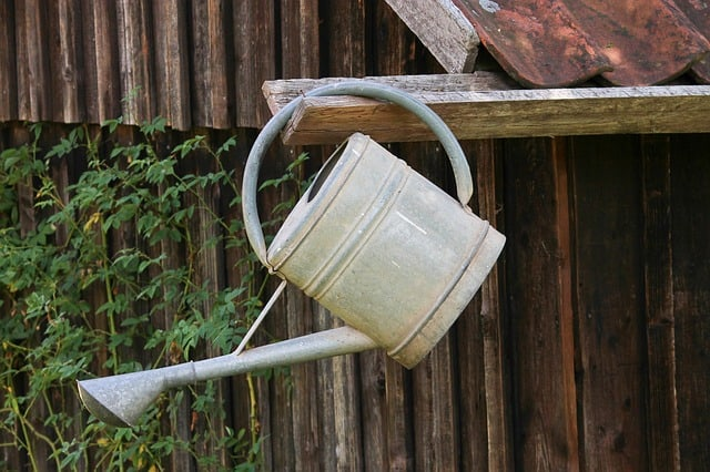 6 Watering Can