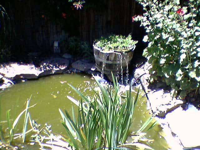 67 Pond with Fountain