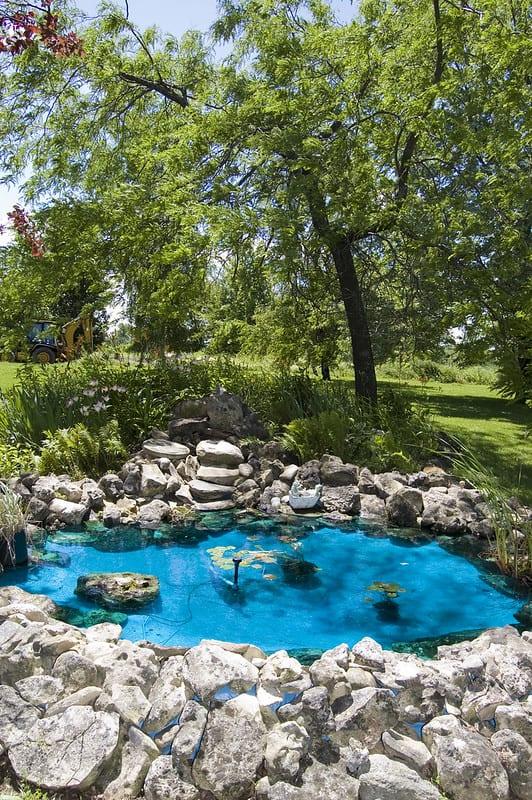 74 Focal Point Pond