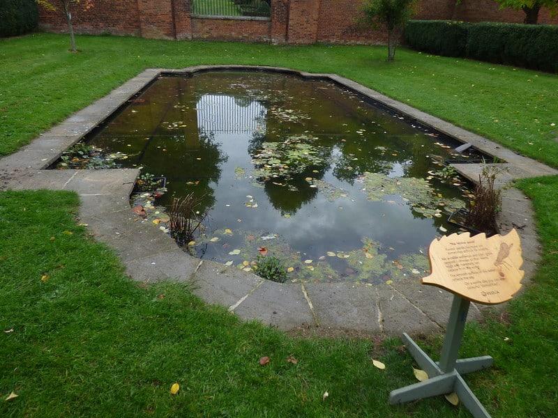 75 Odd Shaped Pond