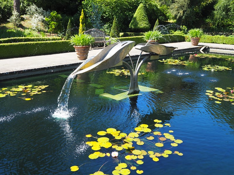83 Pond with Irregular Fountain