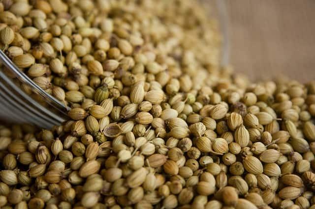 9 Coriander Seeds