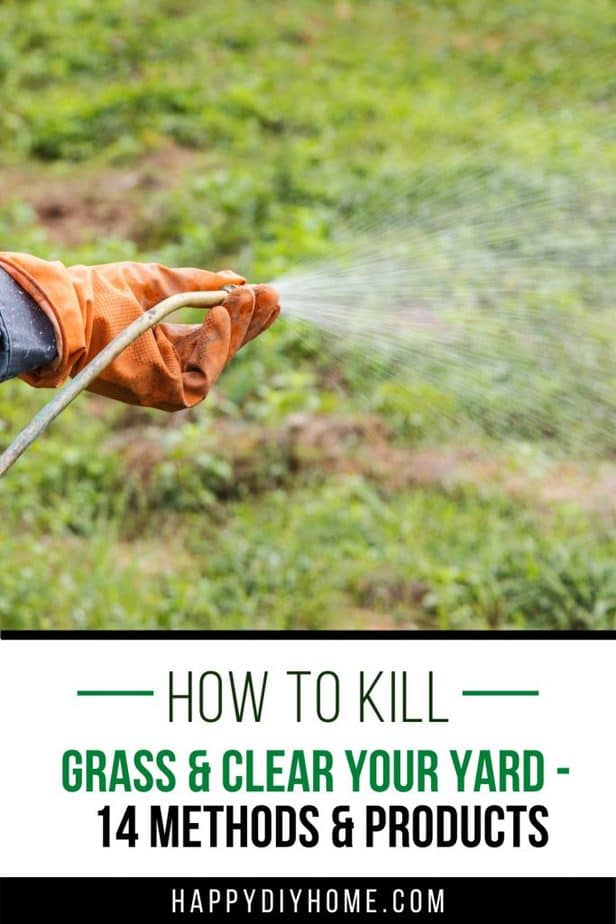 How to Kill Grass 1