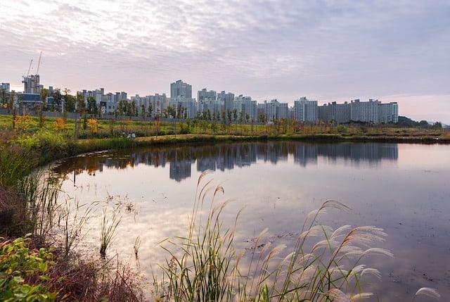 Large Reflecting Pond