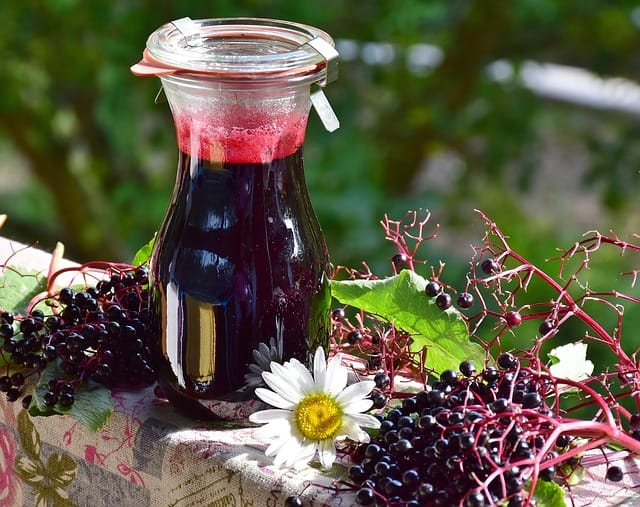 10 Fresh Elderberries and Juice