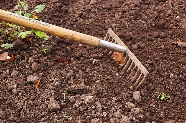 3 Weed and amend your soil before planting