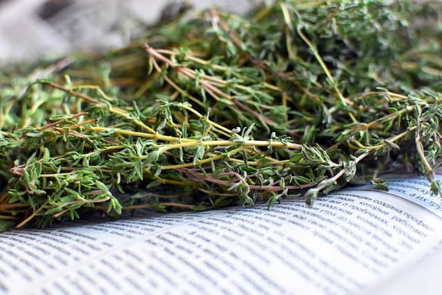 9 Drying Thyme