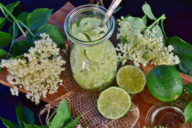 9 Elder Flowers and Drink