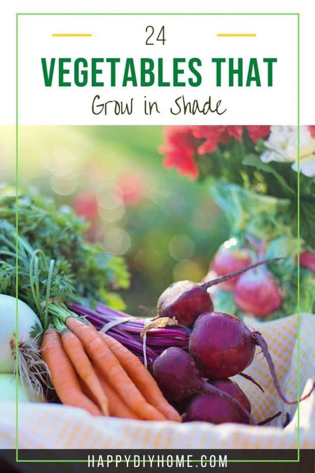 Shade Vegetables 2