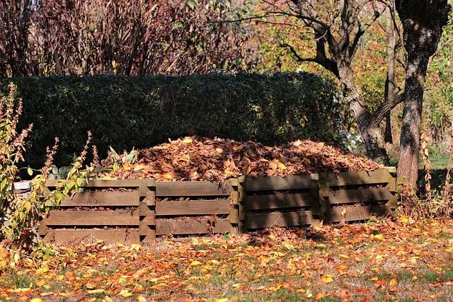 6 Leaf Compost