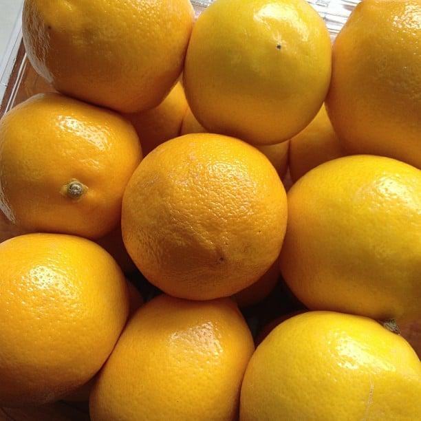 6 Meyer Lemon