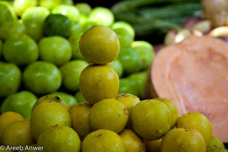 8 Bush Lemon