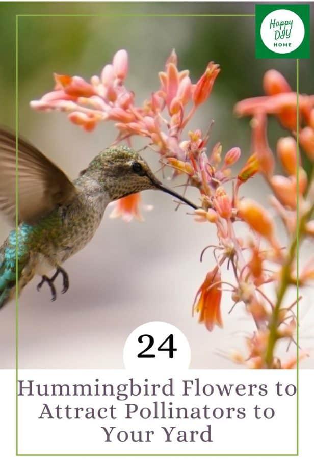 Hummingbird Flowers 1