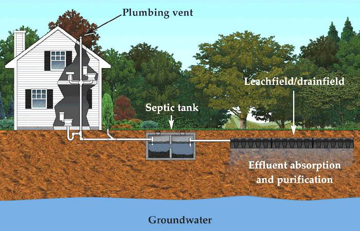 1 Understanding Septic Systems