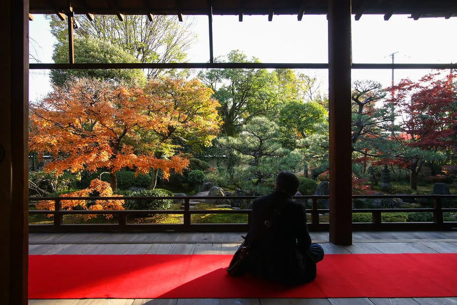 18. Japan Gardens and Contemplation