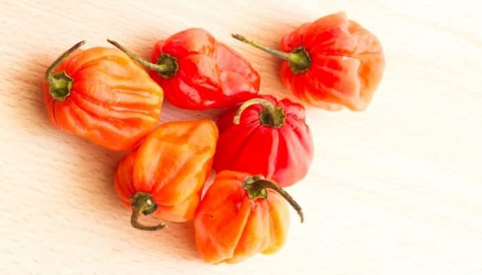 2. Close up image of six orange and red habanero peppers