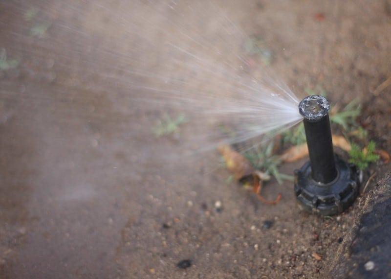 4 Sprinkler Features