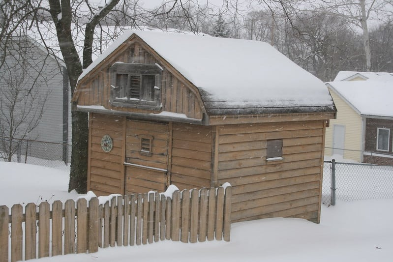 5 Shed Costs FAQs