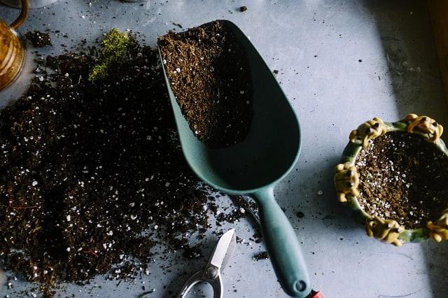 7 Potting Soil