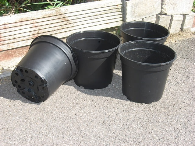 7 nursery container