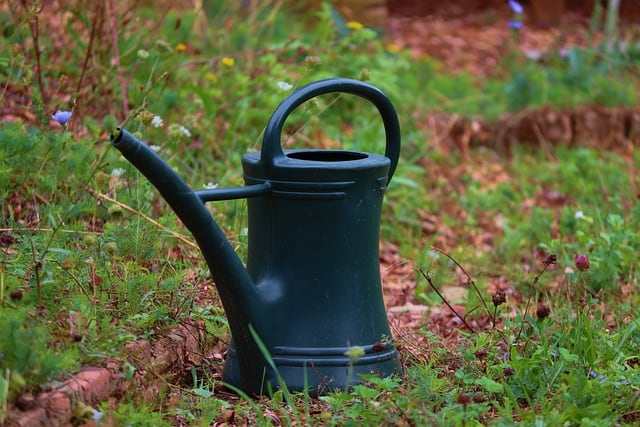 8 Watering Can