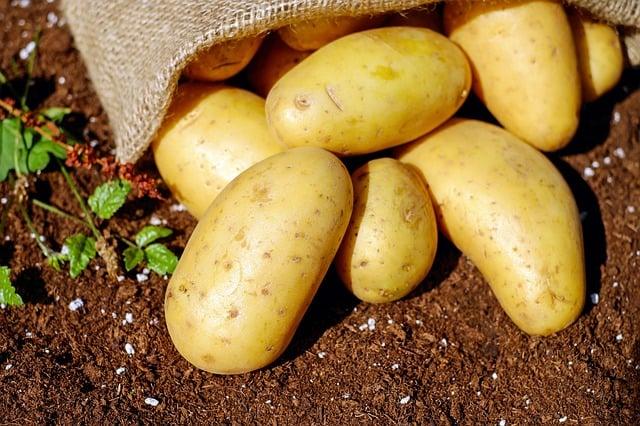 2 Fresh Potatoes