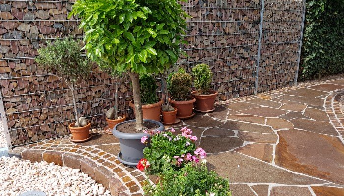 20. This gabion wall is a perfect example of its versatility and adaptability