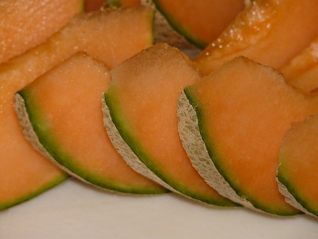 9 Growing cantaloupe is a great addition