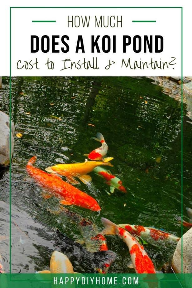 Koi Pond Cost 1