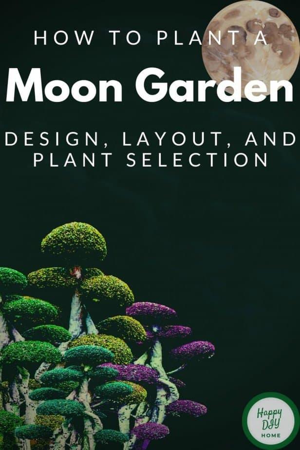 RAINBOW BONSAI MOON GARDEN COVER OPTION 3
