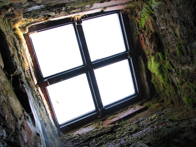 1 Old Skylight