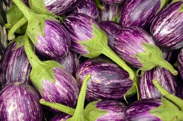 2 Eggplants come in many colors
