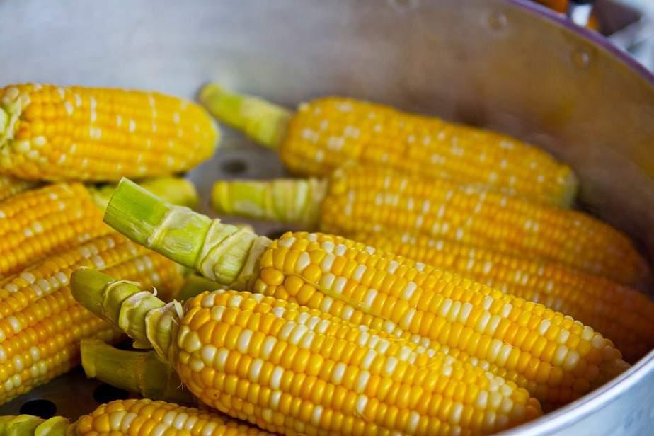 3 Yellow White Sweet Corn
