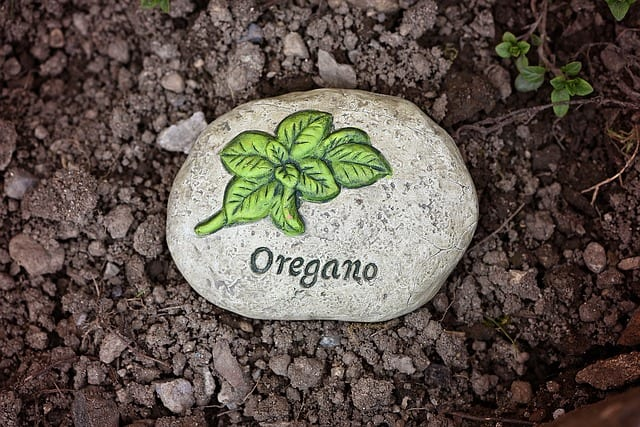 4 Oregano Rock