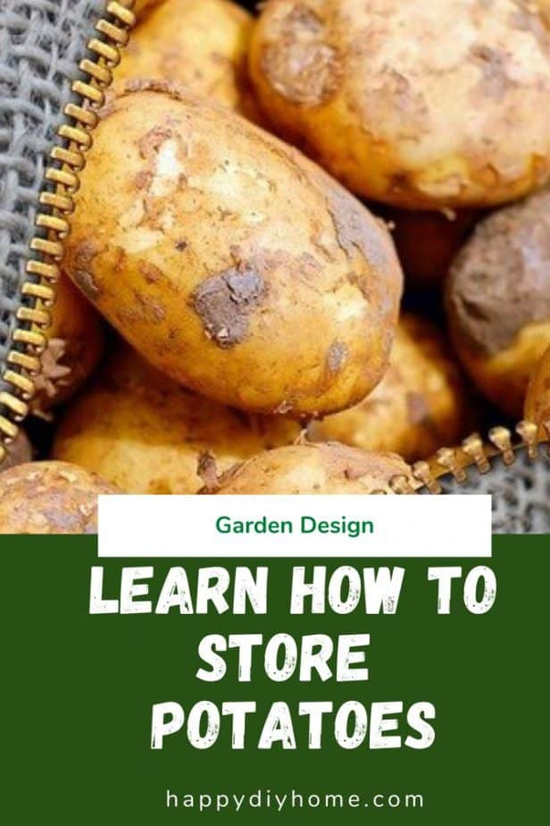 How to Store Potatoes 1
